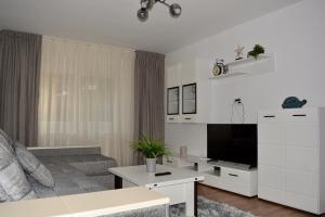 obrázek - Apartament Tolstoi