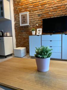 Apartamenty ToTuGdynia 4