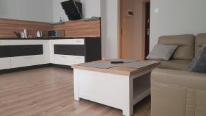 Apartament 3 pokojowy Plac Ratuszowy w Jeleniej Górze