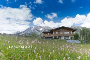 Appartements Lärchmoos - Apartment - Ramsau am Dachstein