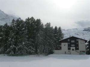 Am Vogelwald - Chalet - Saas-Fee
