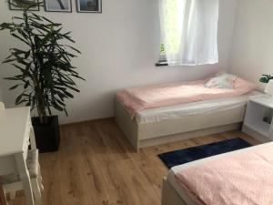 Apartament Neli