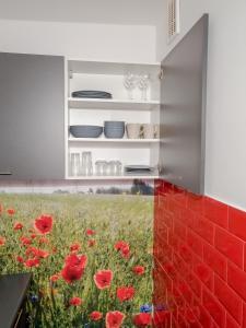 Apartament Pod Gołębiem