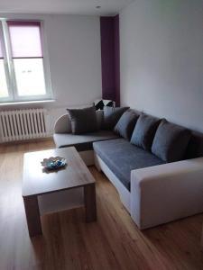 Tinka Apartament