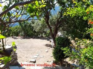 levante studios Αndros Andros Greece