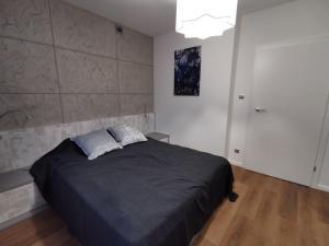 Apartament Platynowy w Centrum Miasta