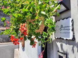 Il Borghetto di San Giuseppe Rooms&Apartments
