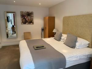 Badgemore Park, Bed and breakfasts  Henley on Thames - big - 60
