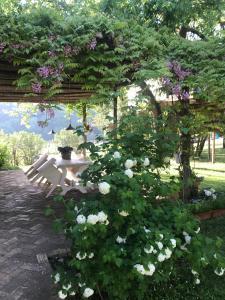 Borgo del Gelso Cottage