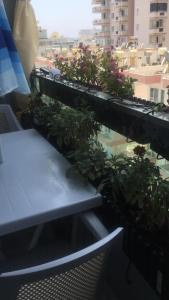 Аппартаменты
