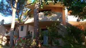 Green House - Woods And Beaches - Sardinia