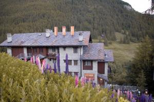 Accommodation in Chamois