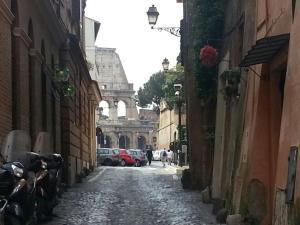 L'edera al Colosseo - abcRoma.com