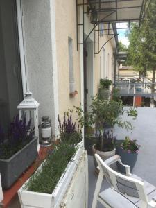 Villa Italiana