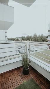 Apartament NOVA