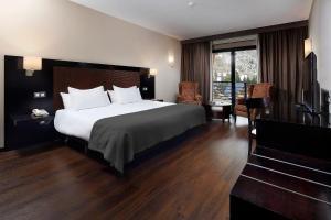 HG Alto Aragón - Hotel - Formigal
