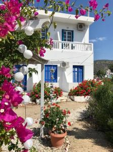 Katapola Vekris apartments Amorgos Greece