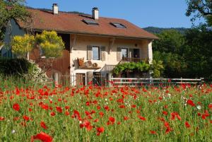 Accommodation in Divonne-les-Bains