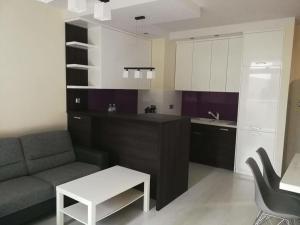 Apartament na Polanie