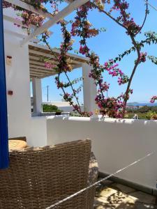 Spanos Apartments Andros Greece