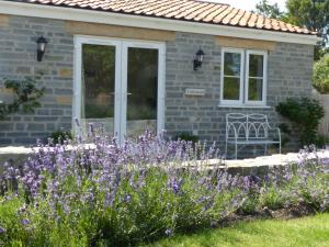 Littlemead - Newly renovated private studio near Glastonbury