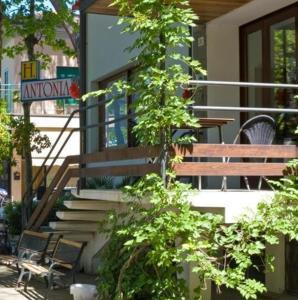 HOTEL ANTONIA - AbcAlberghi.com