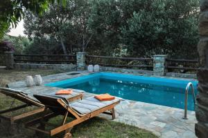 2AG252-House with a pool in Andros Andros Greece