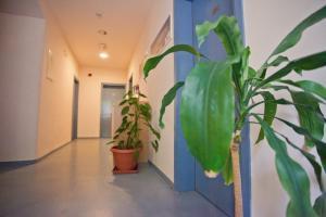 Youth Hostel Rijeka, Hostely  Rijeka - big - 9