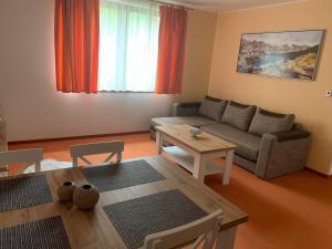 Apartmán Superior s 1 spálňou Fatrapark 2 Apartments