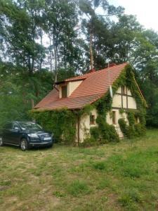 Żółty Domek nad Jeziorem Lubniewice