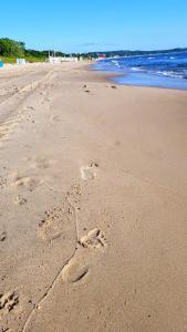 Plaża 10MIN Gdańsk Brzeźno