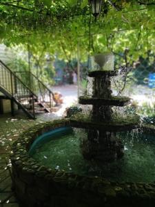 Гостевой дом Черноморская лоза, Джубга