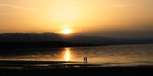 Shorewater Resort - Bowser
