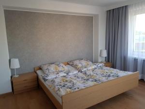 Apartament Aleksandra we Wielu z widokiem na jezioro