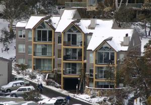 Snowman 1 - Apartment - Thredbo
