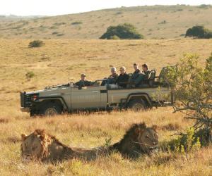 Lalibela Game Reserve (9 of 184)