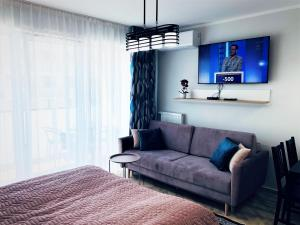 Lavender Deluxe Beach Apartments