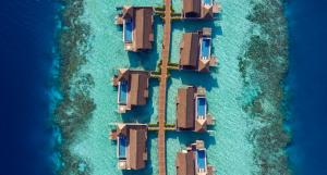 Waldorf Astoria Maldives Ithaafushi (4 of 63)