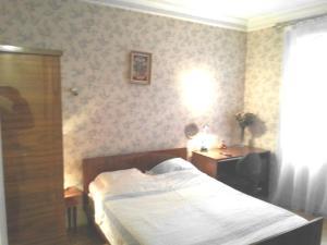 chambre dans grand appartement Paris 15