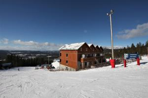 Övre Björnterassen Björnrike, hyrs ut veckovis lördag-lördag - Hotel - Vemdalen