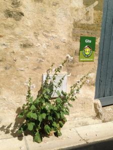 Location gîte, chambres d'hotes Gites les Tournesols dans le département Val d'Oise 95