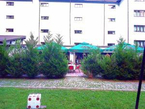 Hotel Hart - Predeal