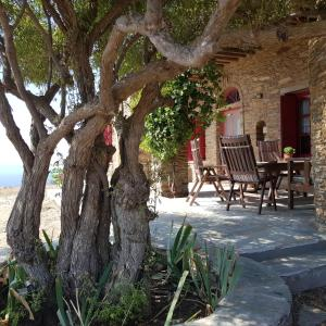 GOLDEN CAPE COTTAgE Andros Greece