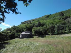 FAGGIO ROTONDO-casa nel verde