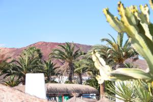 Marconfort Atlantic Gardens Adults Only - All Inclusive, Hotels  Playa Blanca - big - 36