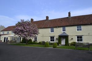 The Lawns Tea Room and B&B