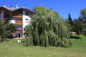 Residenza Tonidandel - Apartment - Fai della Paganella