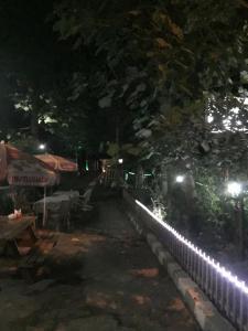 Saray otel restaurant