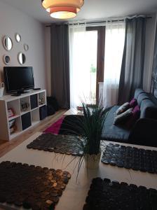 Fuchsia Apartments Krakow center