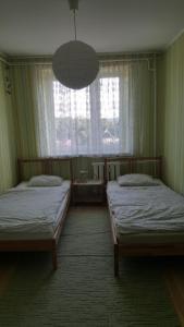 Apartament Gryfitów